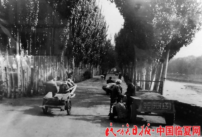 1990年前的临夏市南北滨河路(资料图)_副本.jpg