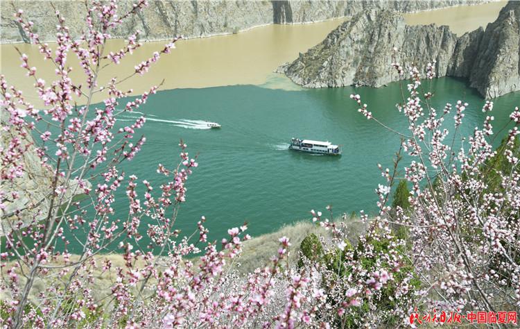 4月7日,游客乘船在刘家峡水库游览。史有东摄 (3).JPG