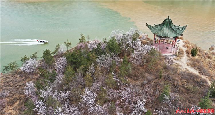 4月7日,游客乘船在刘家峡水库游览。史有东摄 (1).JPG